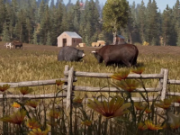 Far Cry 5�s Ecology Is More Than Just Set Dressing