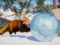 It Is That Snowy Time Of The Year In Planet Zoo